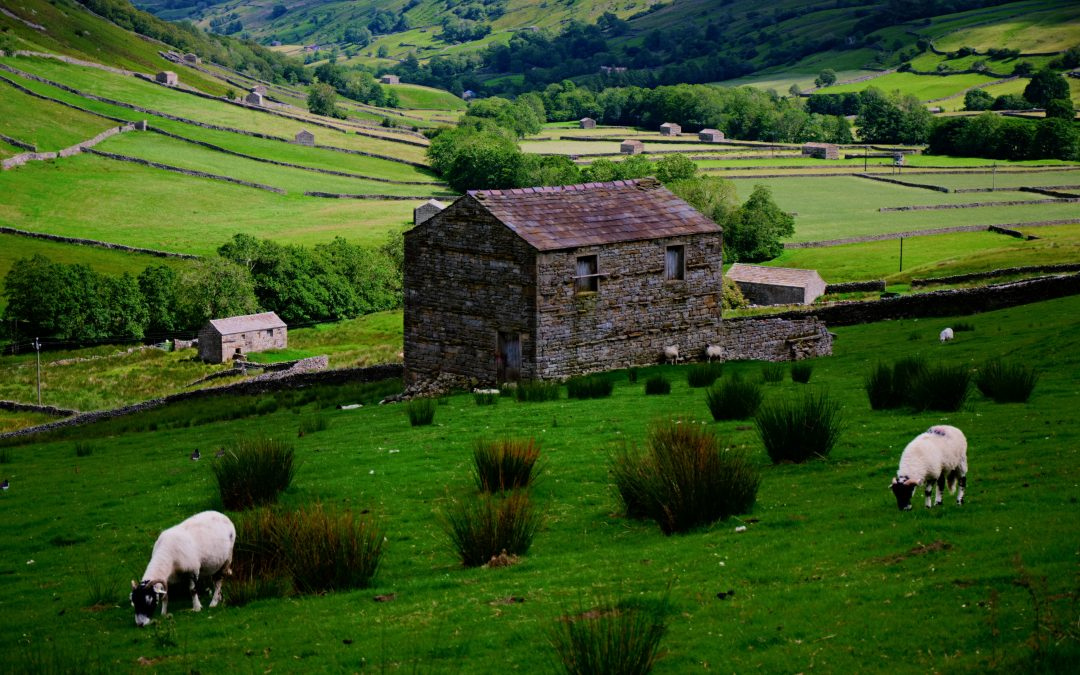 Farm Finance: 6 Reasons Why Finance Would Benefit Your Business