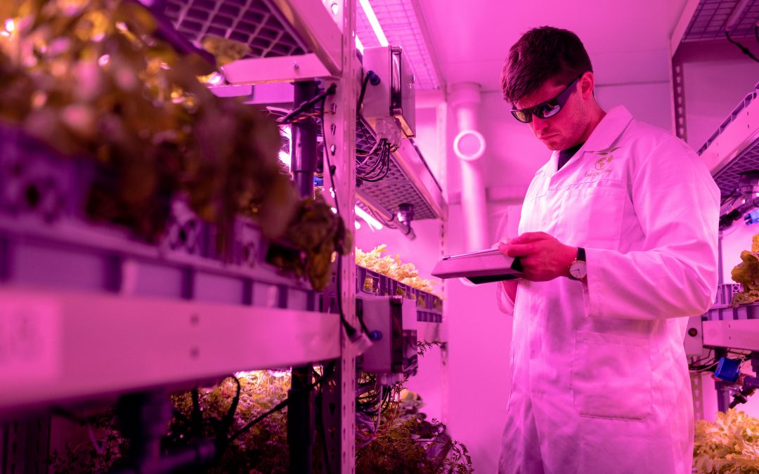 What Does The Future Of Farming Look Like?