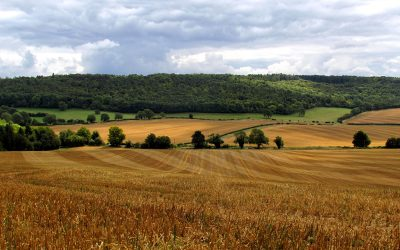 How A Rural Business Loan Can Help You Grow Your Business